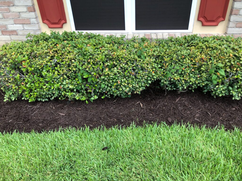 Residential Landscaping In Friendswood Tx We Service